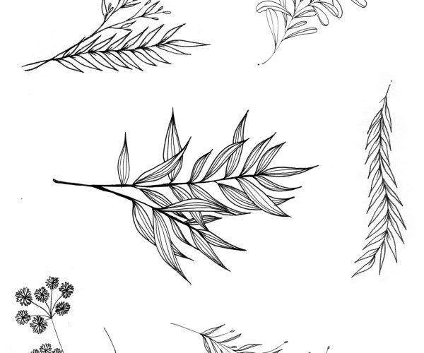 zelie-tatouage-rennes-planche-tatoo-1